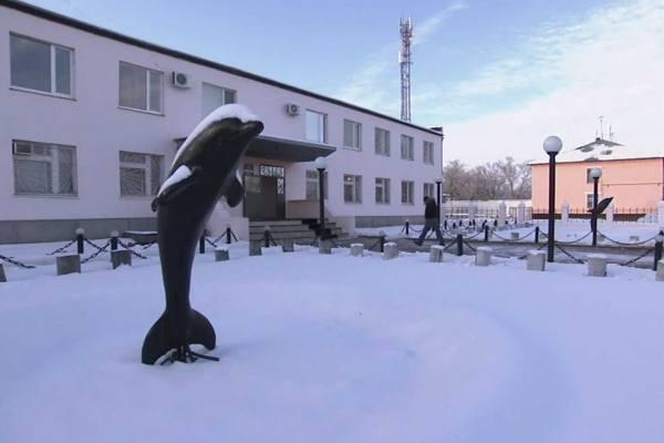 зимний вид на черный дельфин ик-6