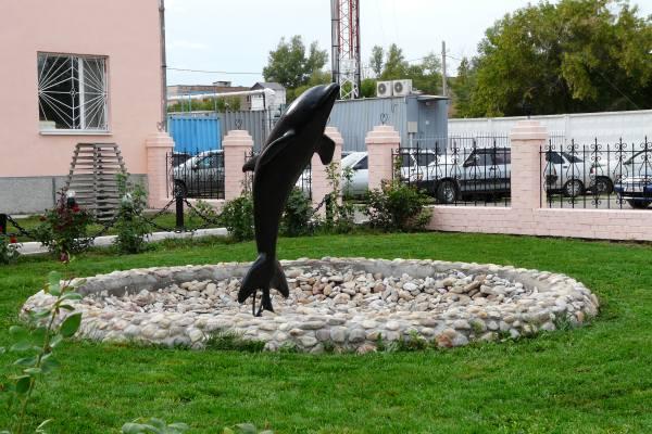 черный дельфин где находится