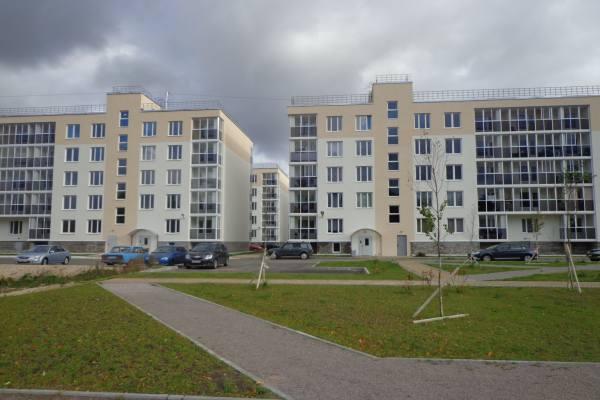 новый район Усть-Луги