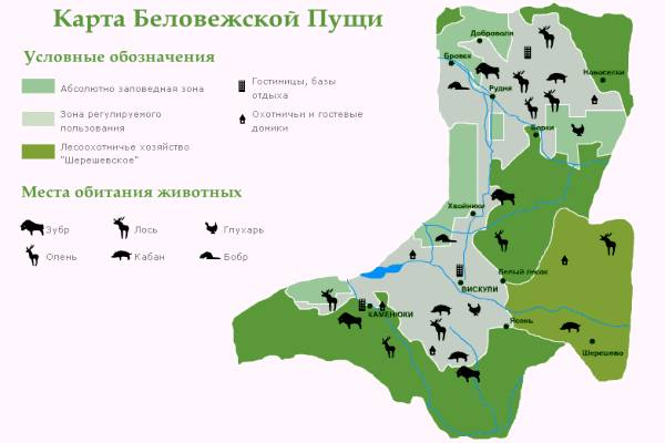 Карта зон и территорий Беловежской пущи